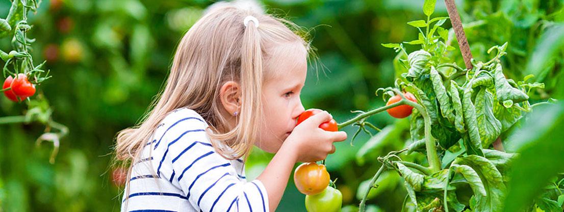 Girl experiences taste, tomato