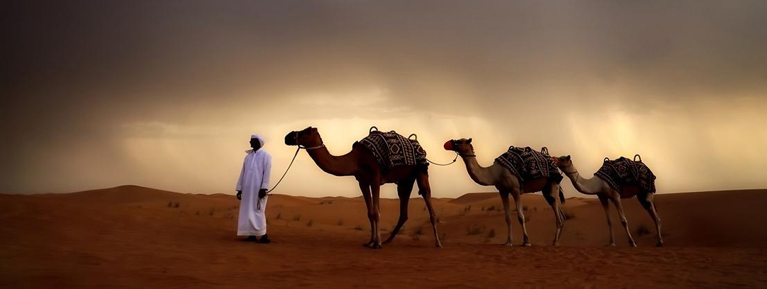 Caravan in the desert, desert brothers